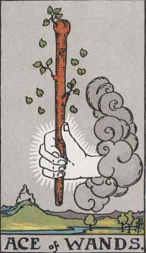 Ace of Wands Tarot Card
